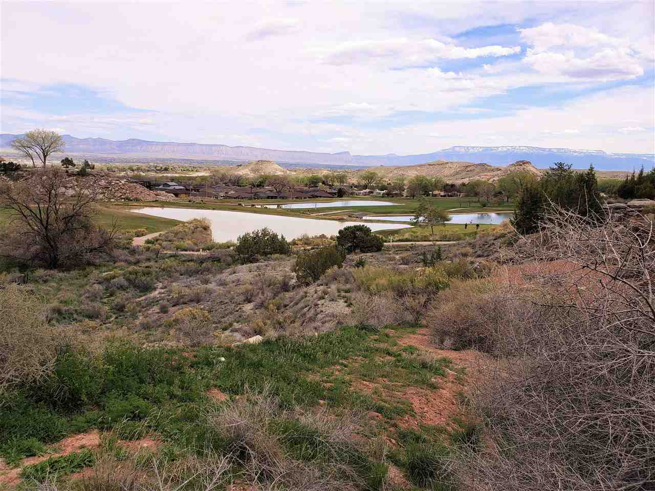 462 High Tiara Court Property Photo - Grand Junction, CO real estate listing