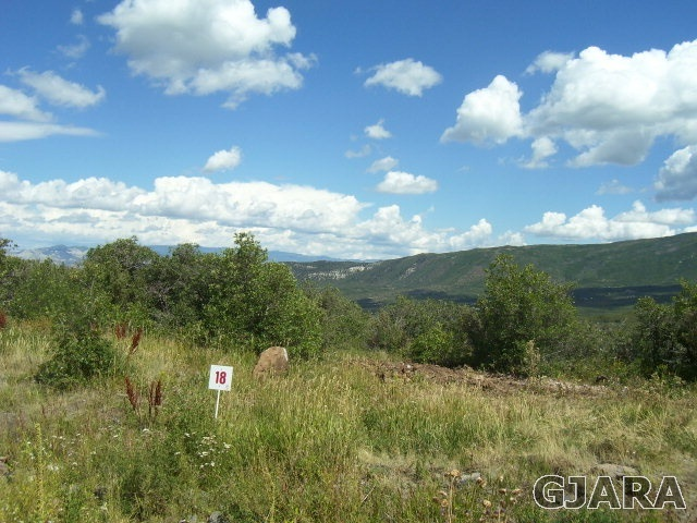 424 Coyote Run Property Photo - Mesa, CO real estate listing