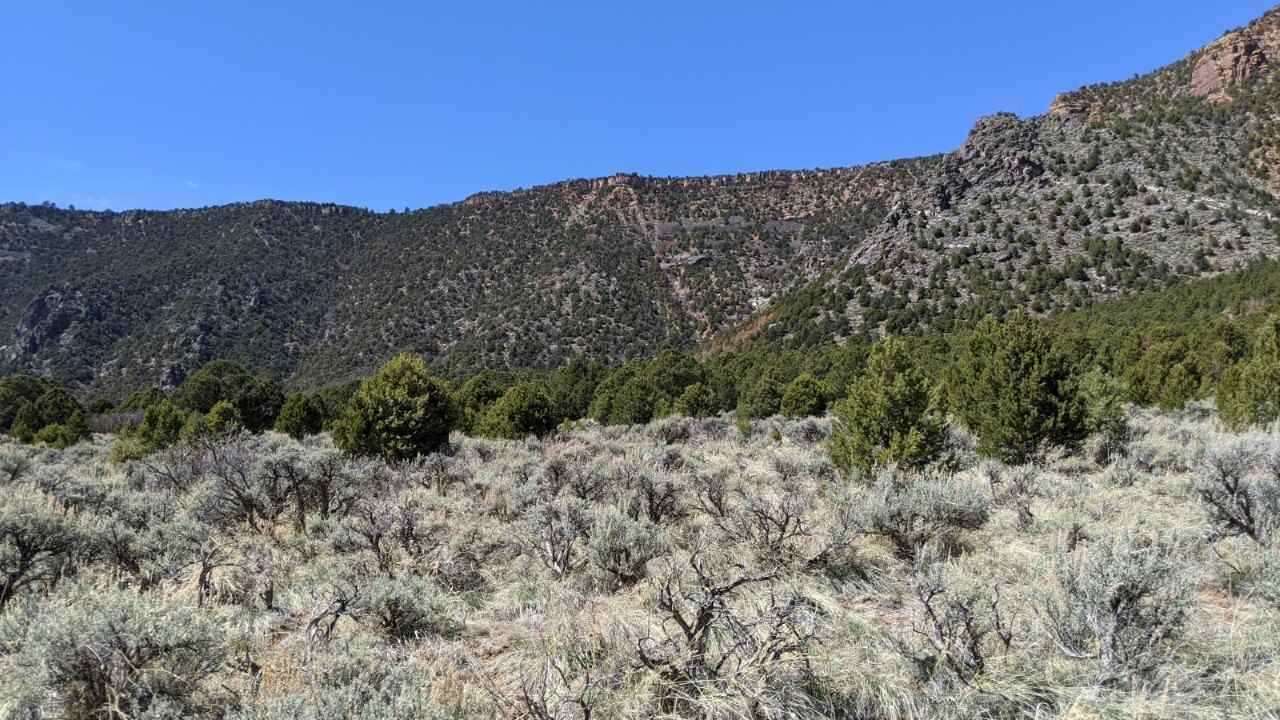 To be determine Highway 141 Property Photo - Whitewater, CO real estate listing