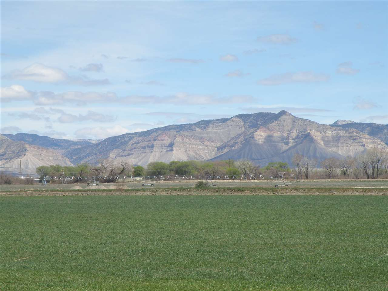 TBD L Road #75.67 AC Property Photo - Fruita, CO real estate listing