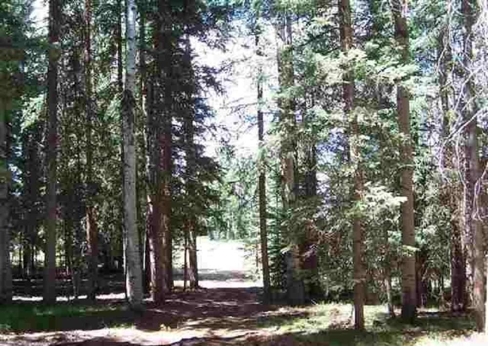 485 Rim Road Property Photo - Cimarron, CO real estate listing