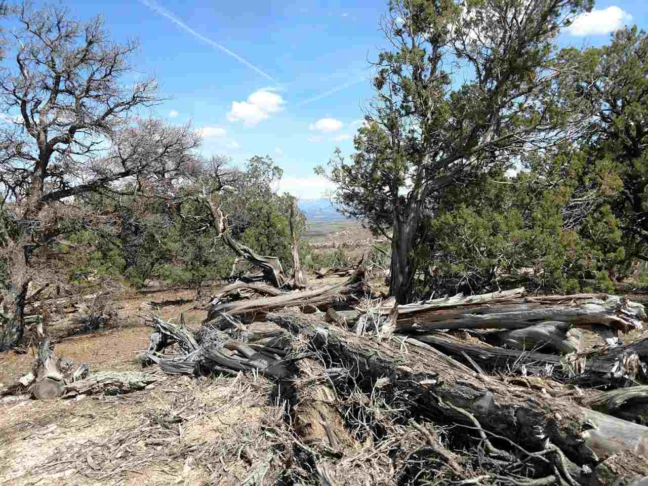 1763 35 1/10 Road Property Photo - De Beque, CO real estate listing