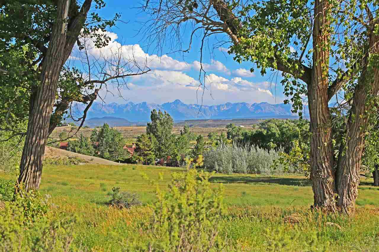 66527 Ogden Road Property Photo - Montrose, CO real estate listing