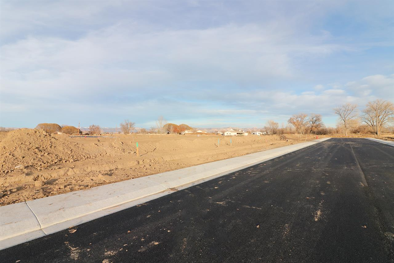 TBD 1 Catalina Court #Lot 1 Property Photo - Fruita, CO real estate listing
