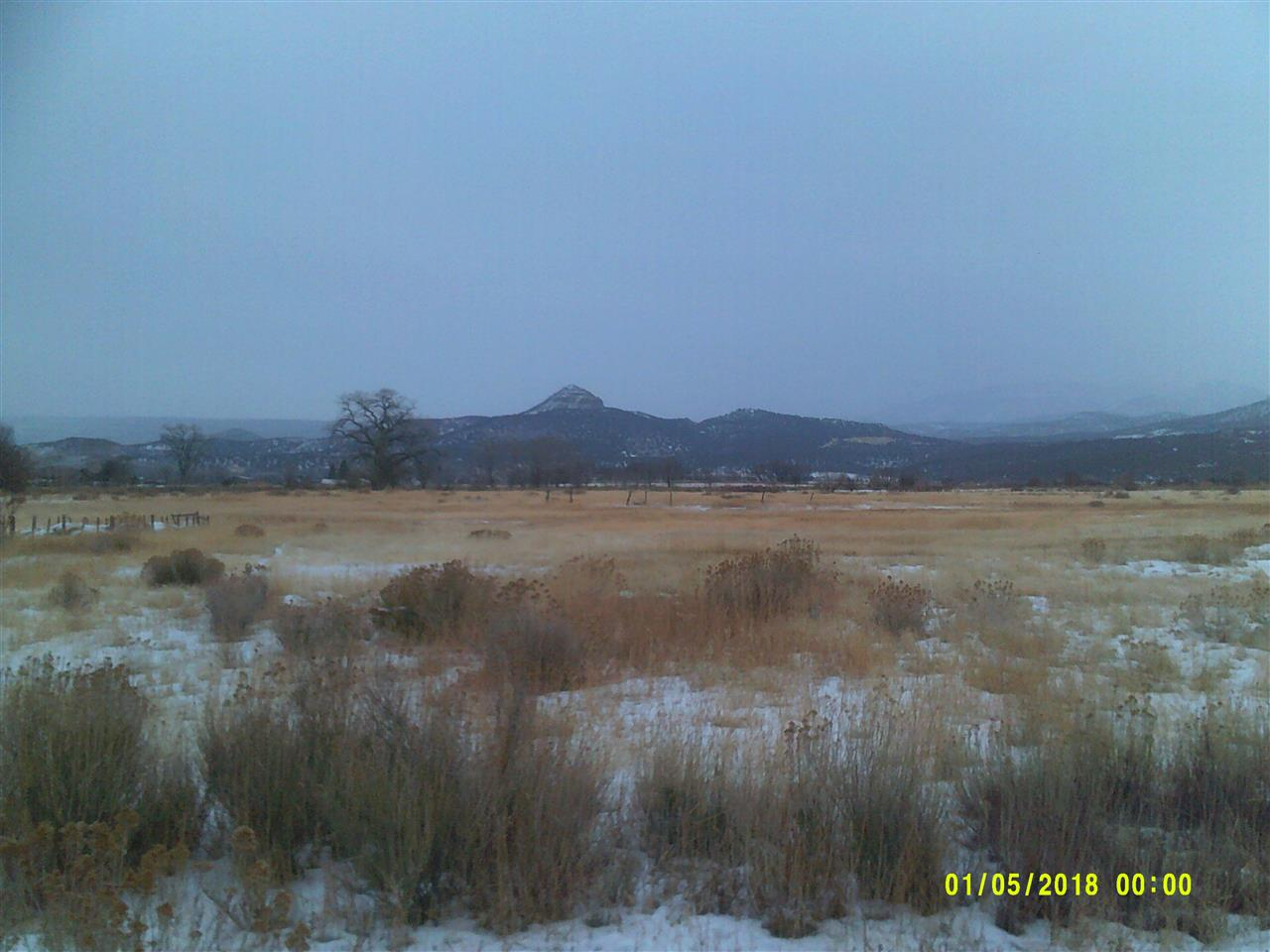 1088 Highway 65 Property Photo - Mesa, CO real estate listing