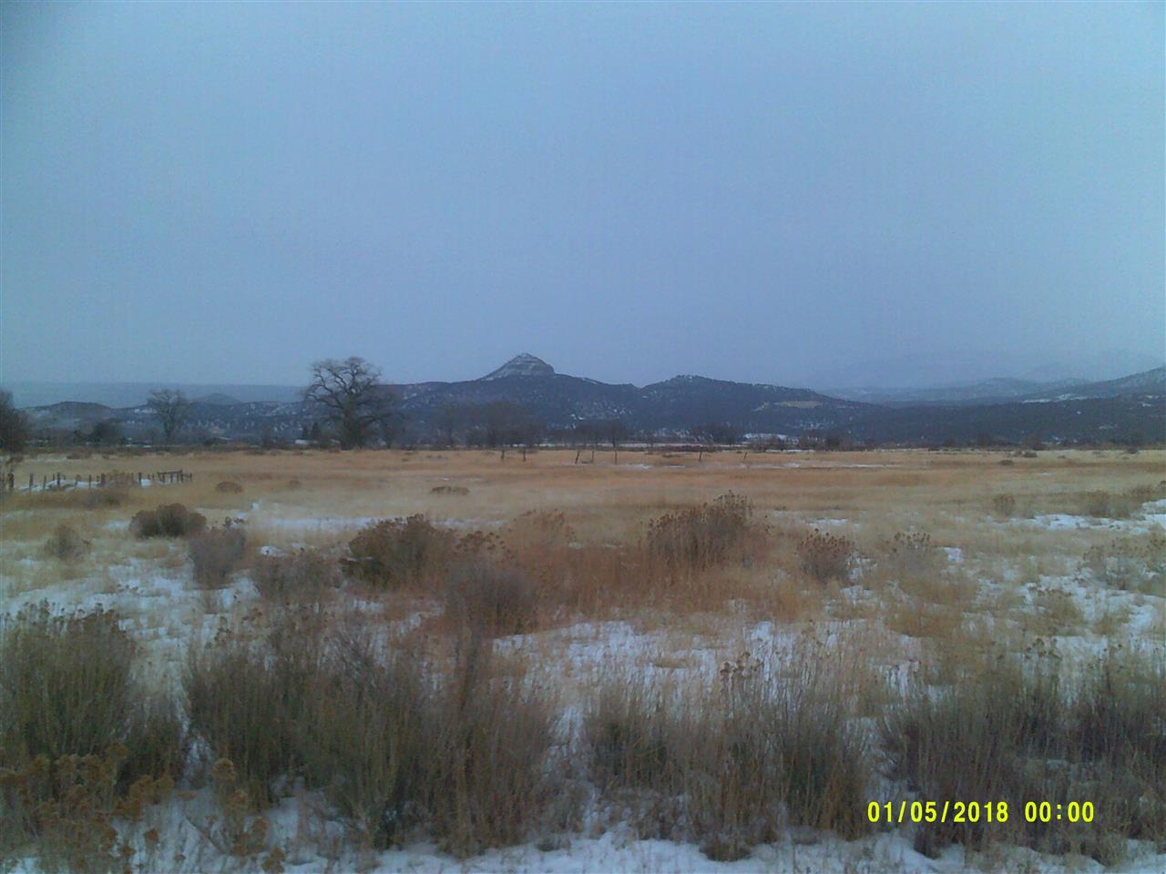 1088 Highway 65 Property Photo