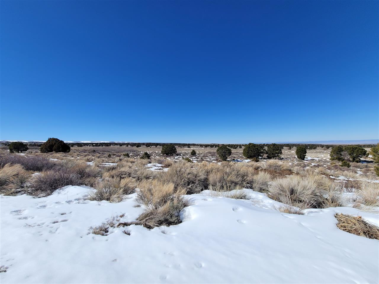 TBD Rollins Road Property Photo - Glade Park, CO real estate listing