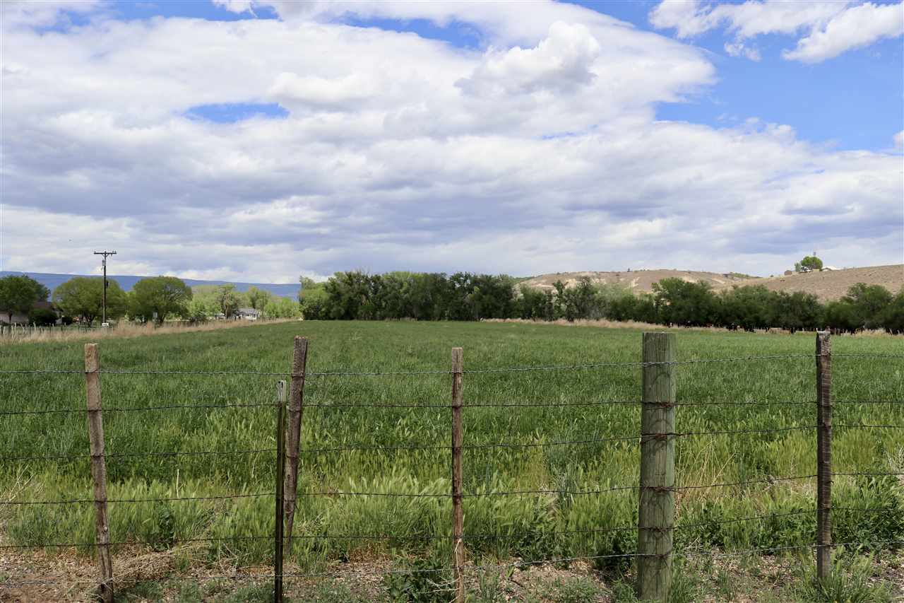 TBD Kaiser Road Property Photo - Austin, CO real estate listing