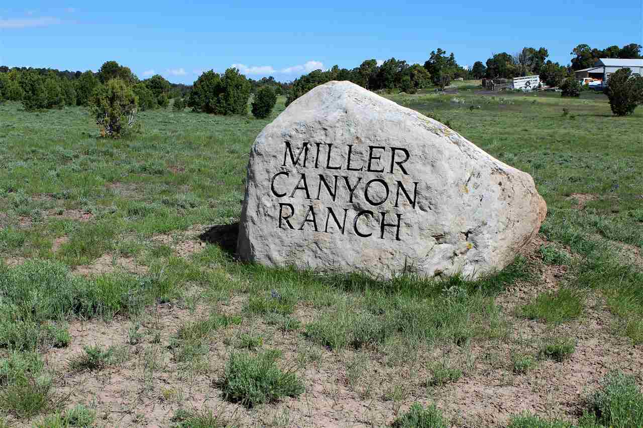 TBD Miller Canyon Ranch Road Property Photo - Glade Park, CO real estate listing