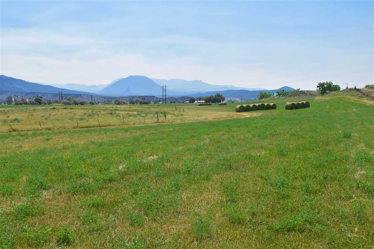 36325 Spurlin Mesa Road Property Photo 3