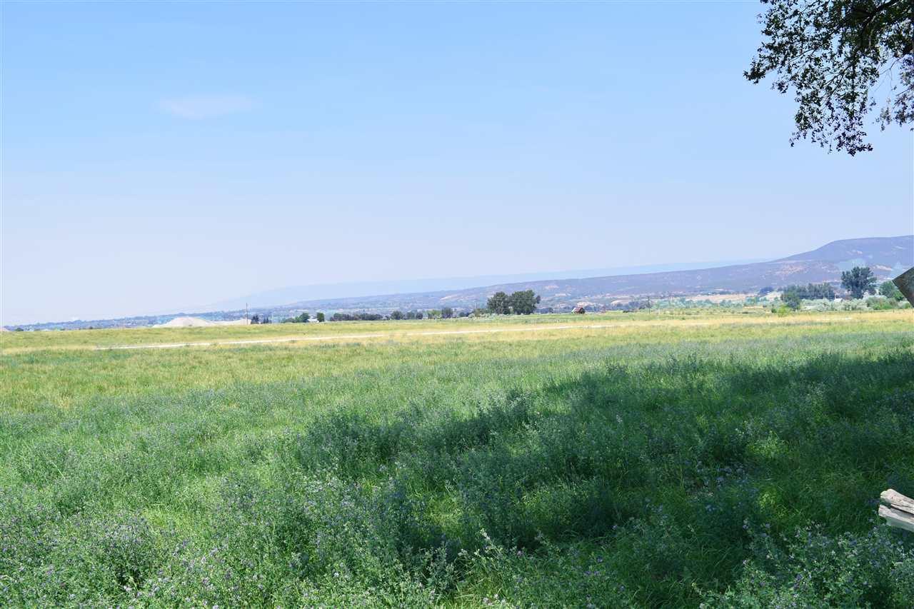 36325 Spurlin Mesa Road Property Photo 7