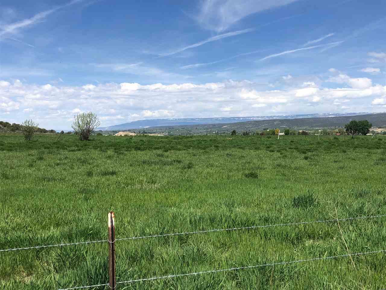36325 Spurlin Mesa Road Property Photo 8