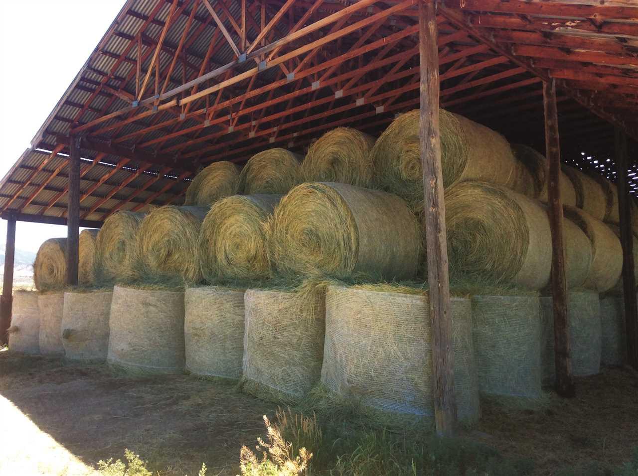 36325 Spurlin Mesa Road Property Photo 9