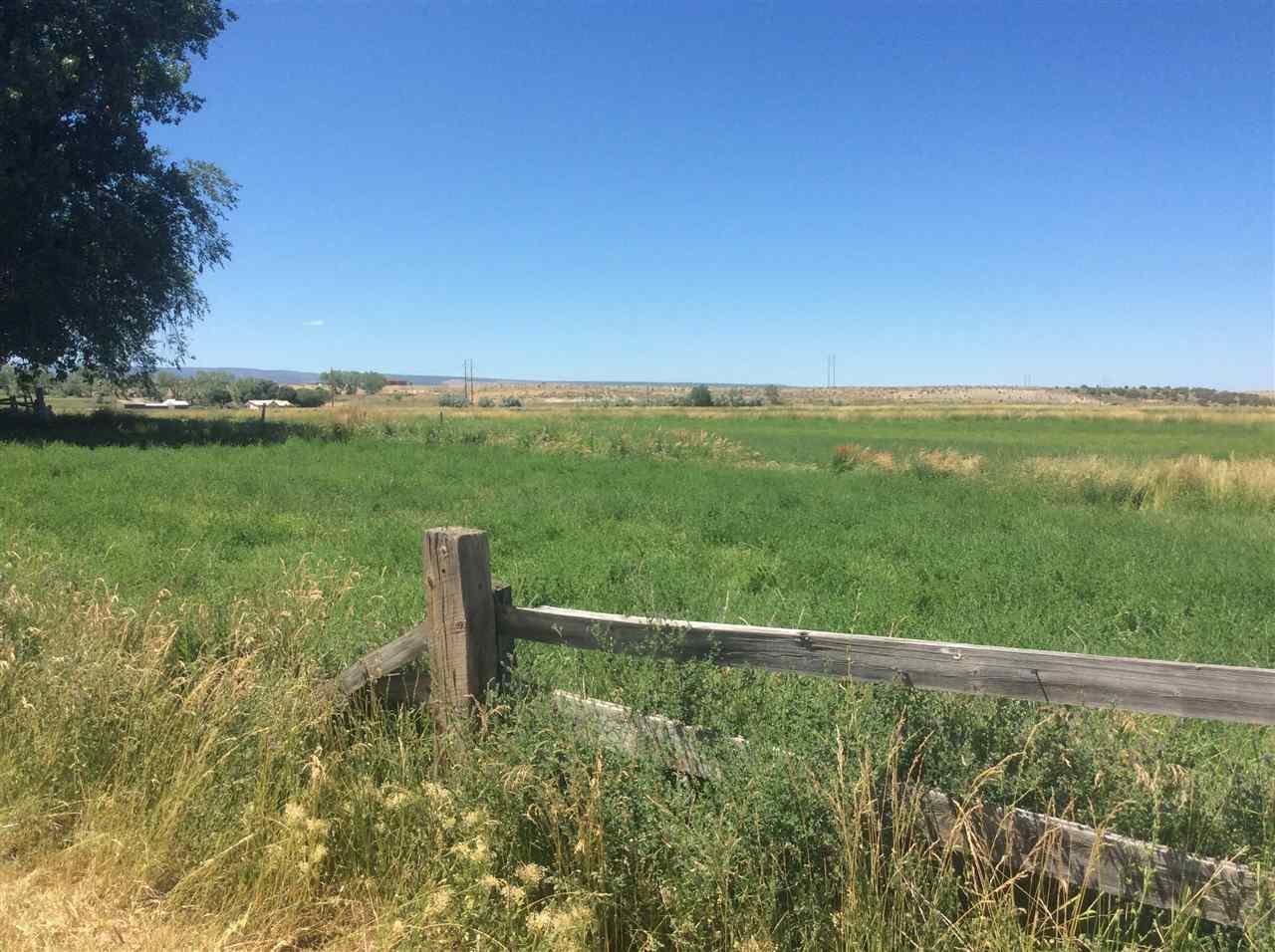 36325 Spurlin Mesa Road Property Photo 10