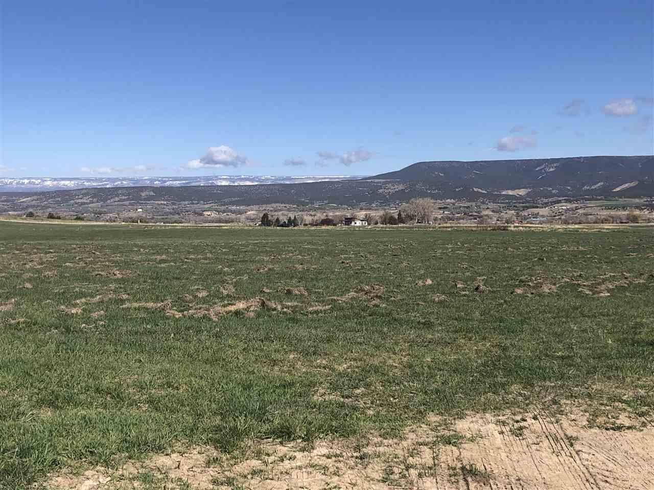 36325 Spurlin Mesa Road Property Photo 14