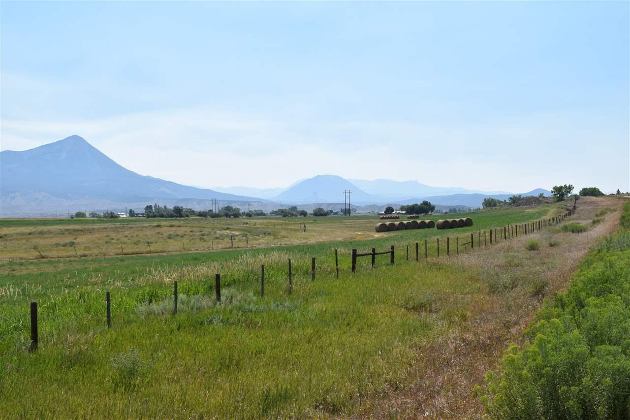 36325 Spurlin Mesa Road Property Photo 15