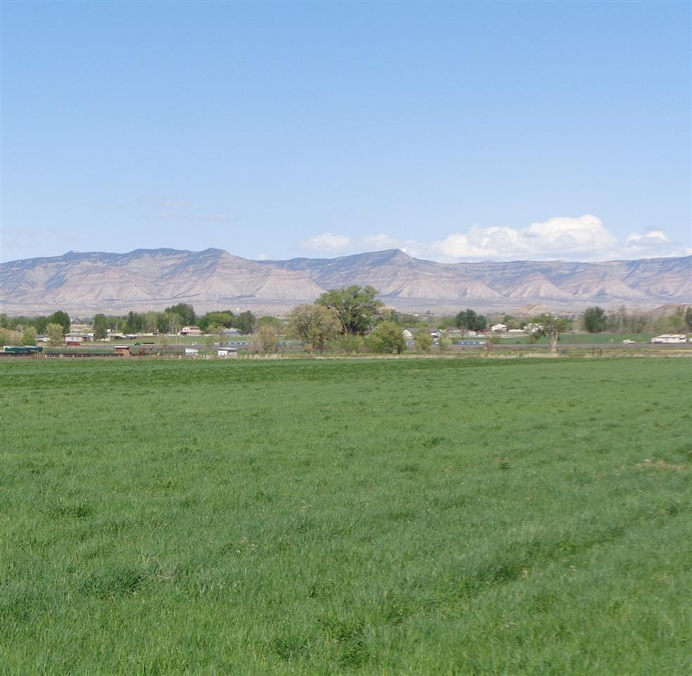 1328 and 1330 16 Road Property Photo - Fruita, CO real estate listing