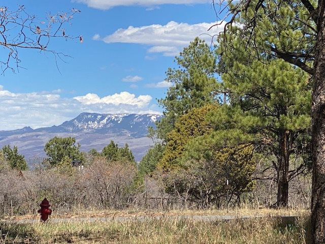 TBD S Badger Trail #Lot 427 Property Photo - Ridgway, CO real estate listing