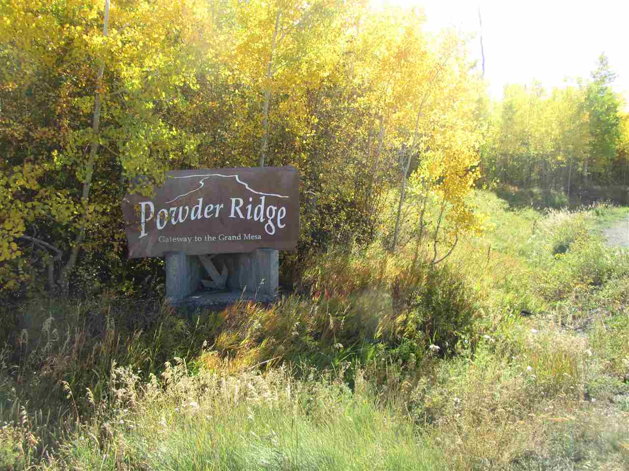 412 Powder Ridge Circle Property Photo - Mesa, CO real estate listing