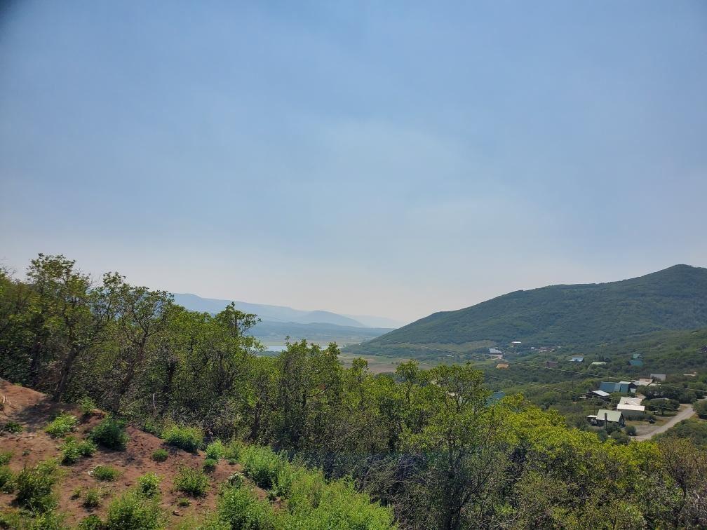 15730 Lariat Loop Property Photo 7
