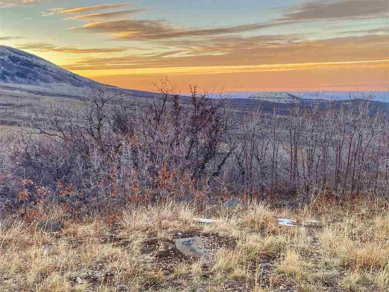 413 Coyote Run Property Photo - Mesa, CO real estate listing