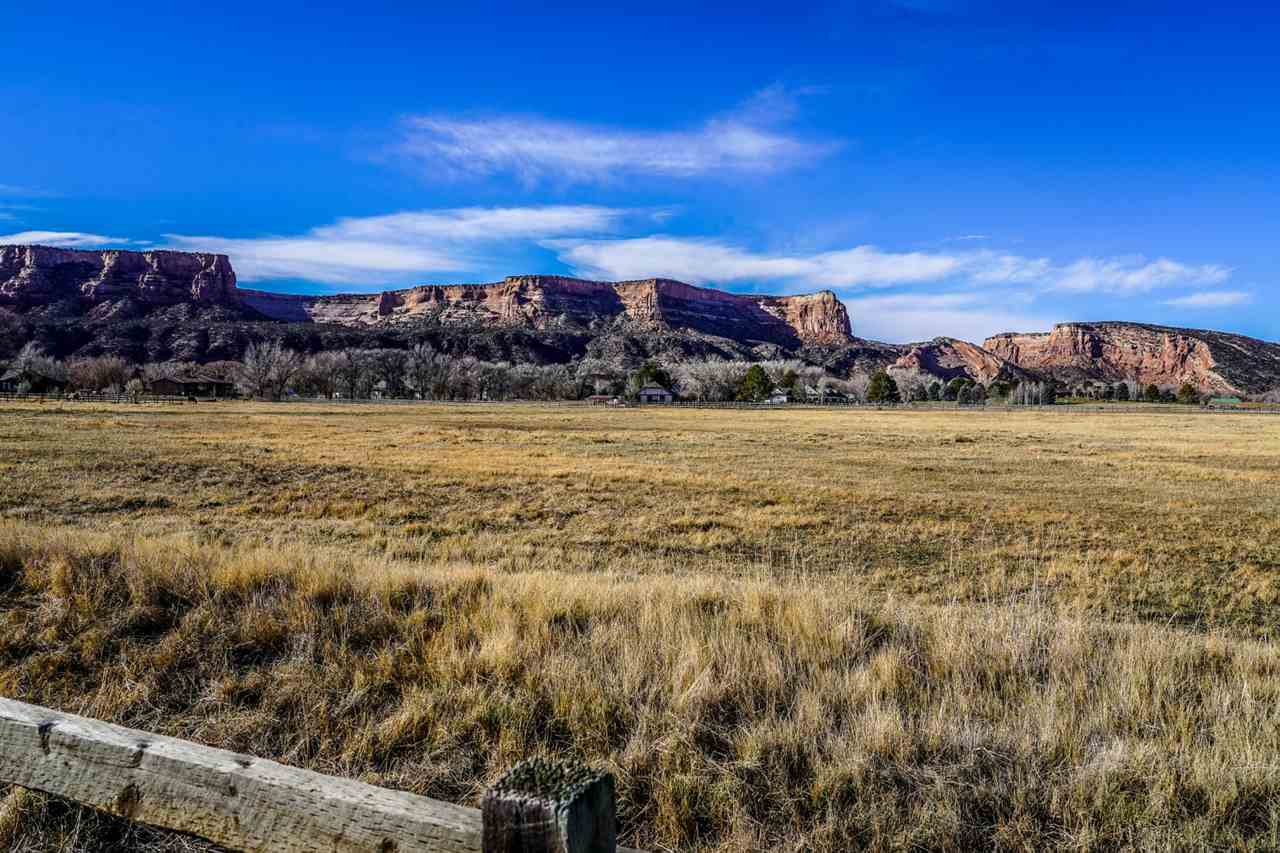 629 20 Road Property Photo - Grand Junction, CO real estate listing