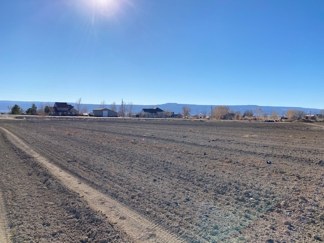 2236 L Road Property Photo - Grand Junction, CO real estate listing
