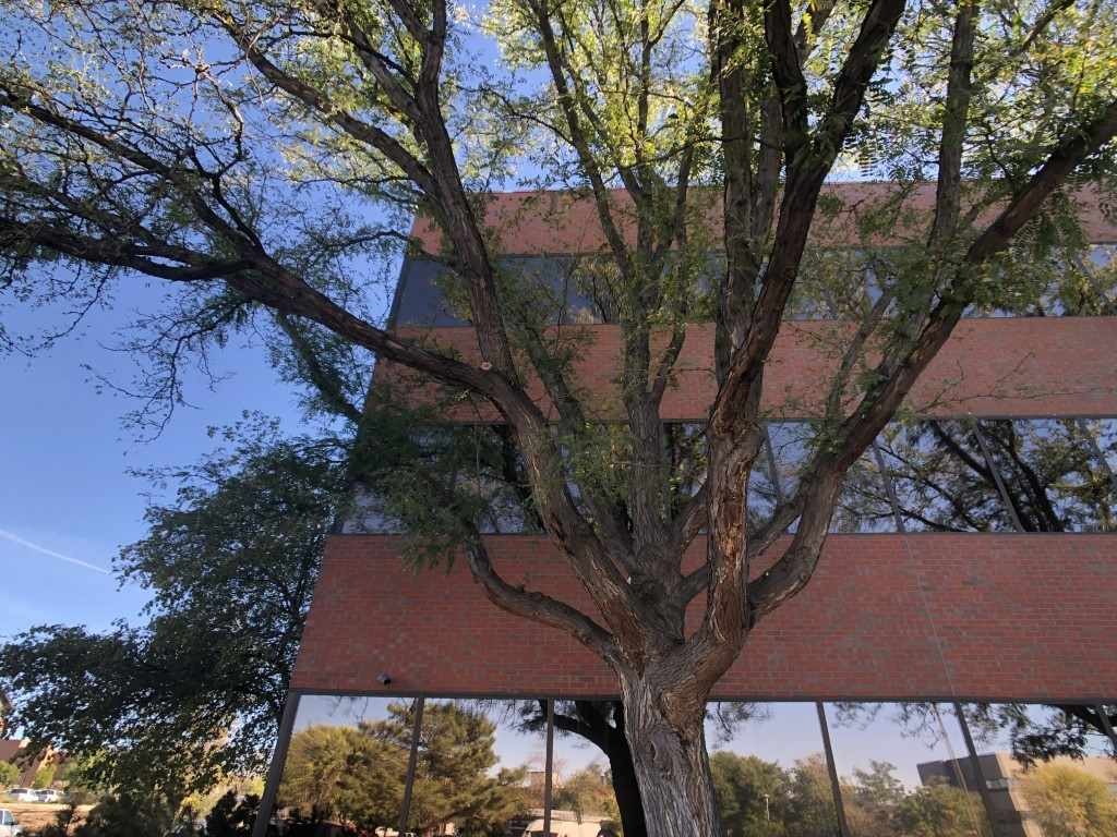 744 Horizon Court #220 Property Photo