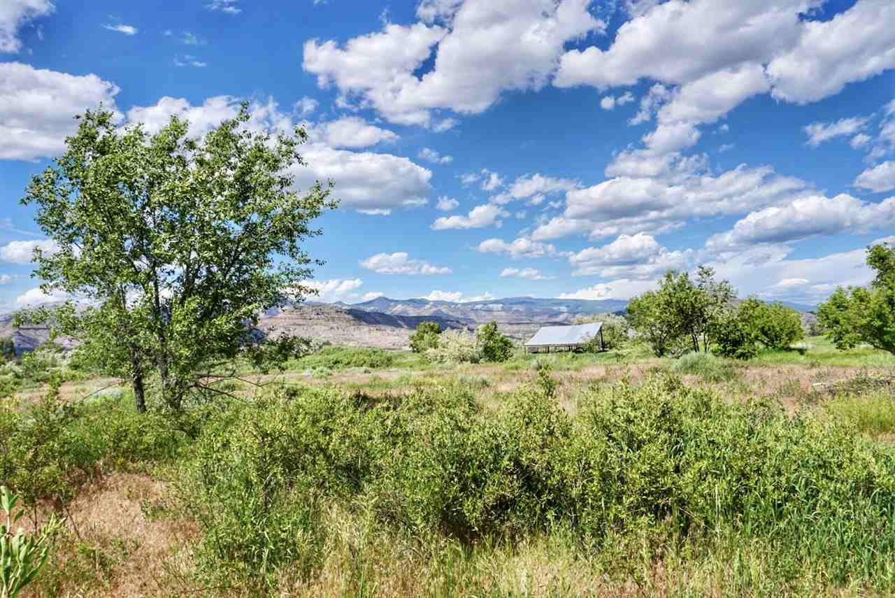49088 KE Road Property Photo - Mesa, CO real estate listing