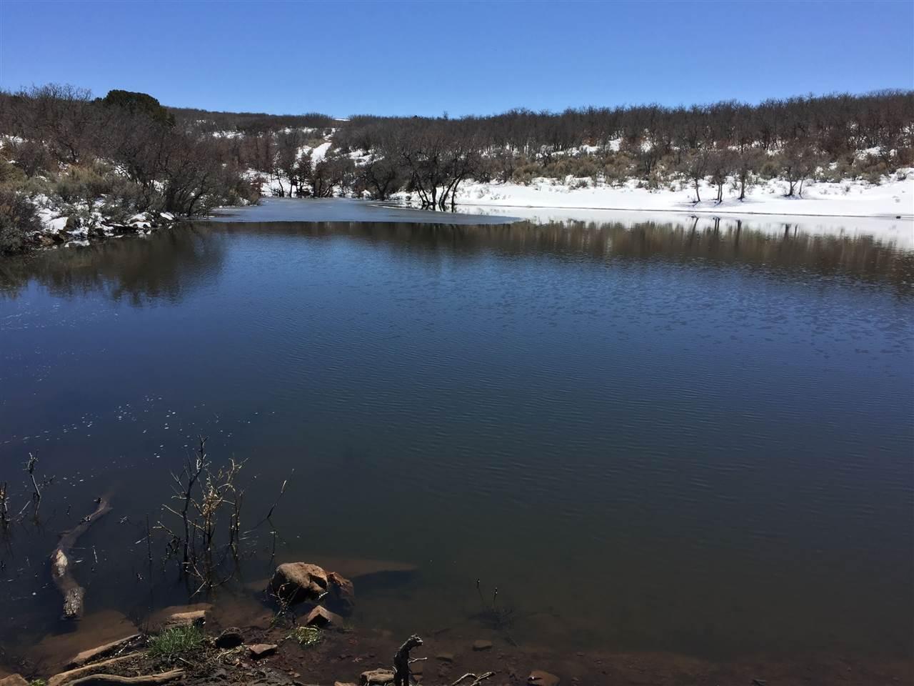 Tbd Spring Creek Road Property Photo