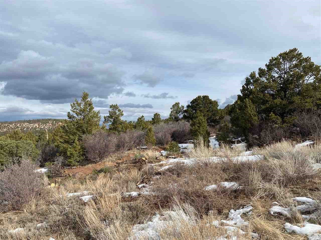 Lot 25 Elk Reserve Road Property Photo - Glade Park, CO real estate listing