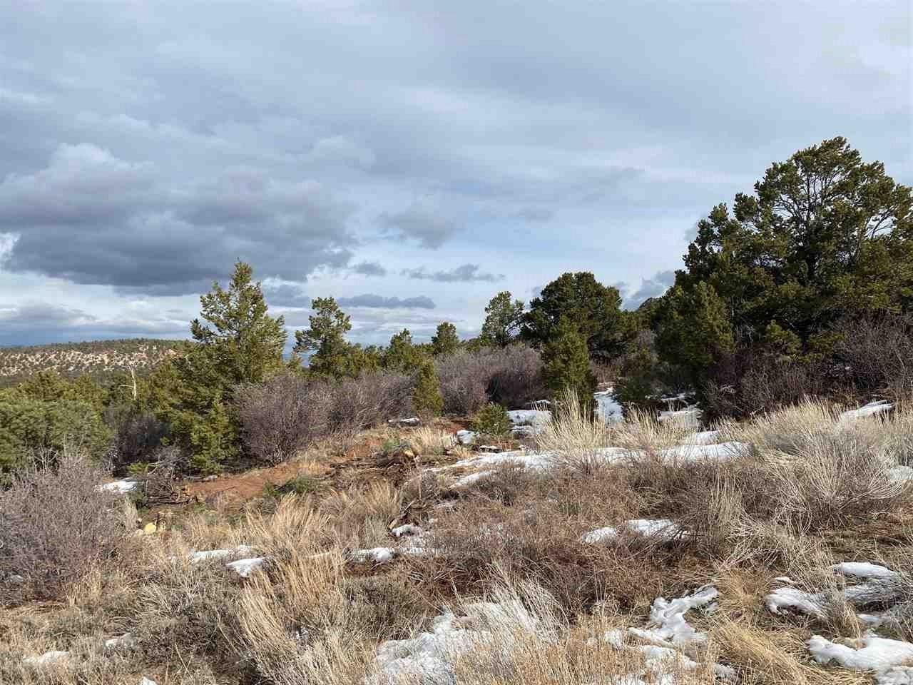 Lot 25 Elk Reserve Road Property Photo