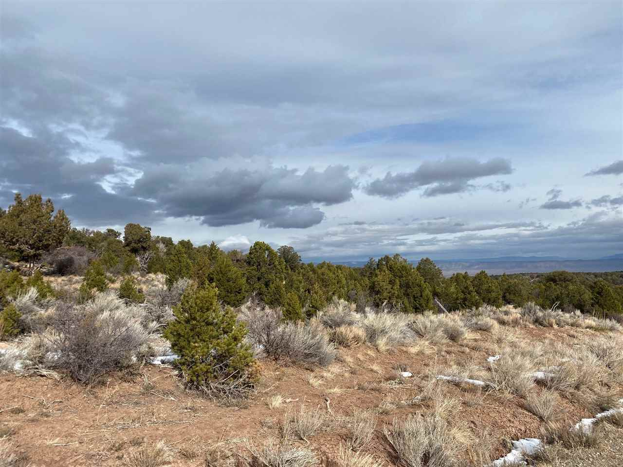 Lot 22 Elk Reserve Road Property Photo - Glade Park, CO real estate listing