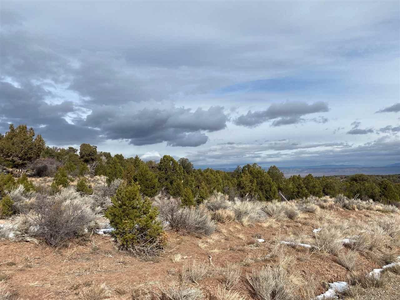 Lot 22 Elk Reserve Road Property Photo
