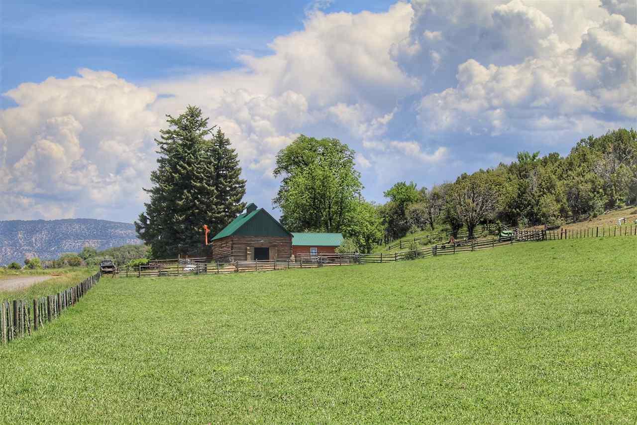 55945 Oe Road Property Photo 21