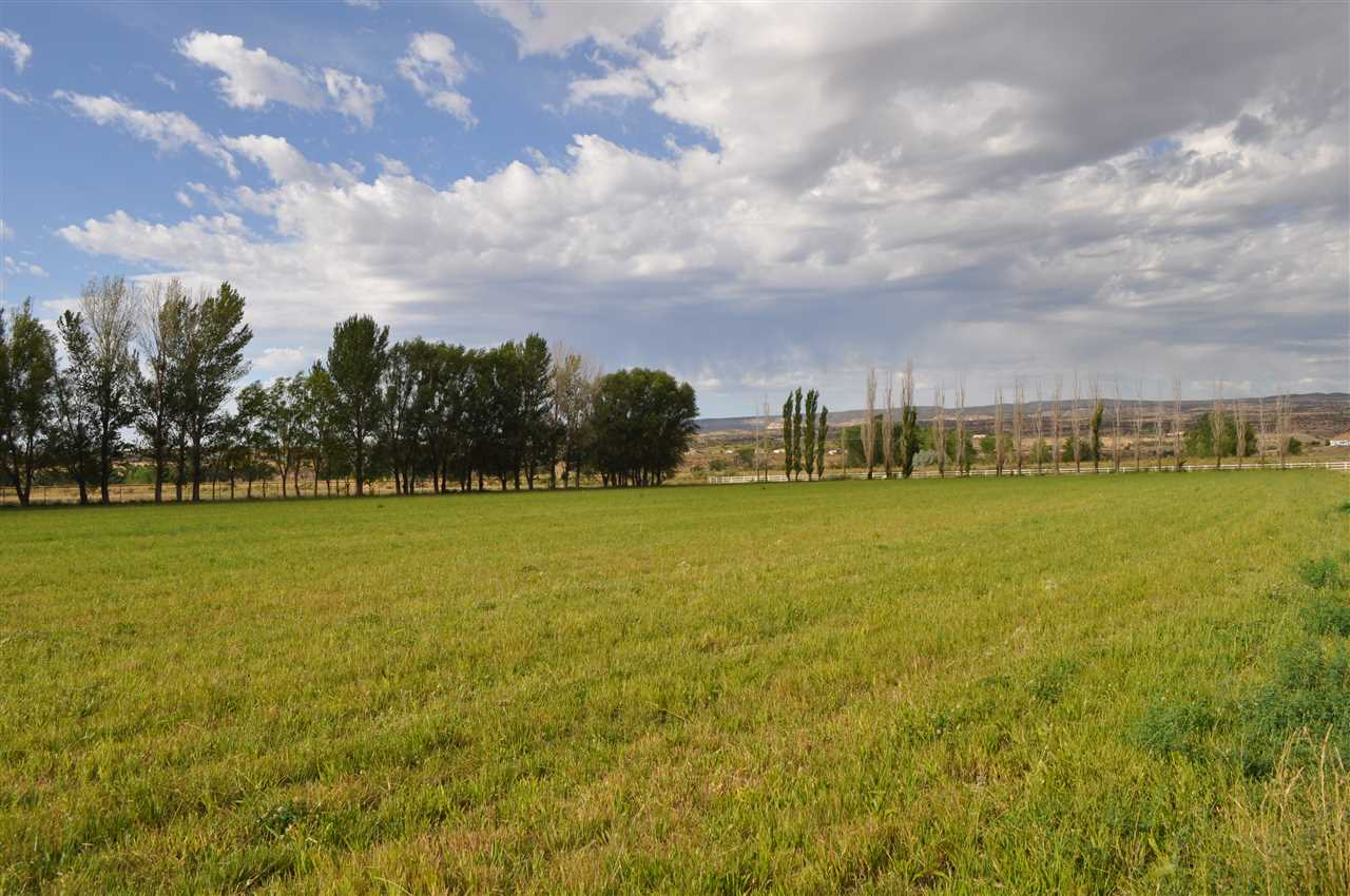 4471 Old Kannah Creek Road Property Photo - Whitewater, CO real estate listing