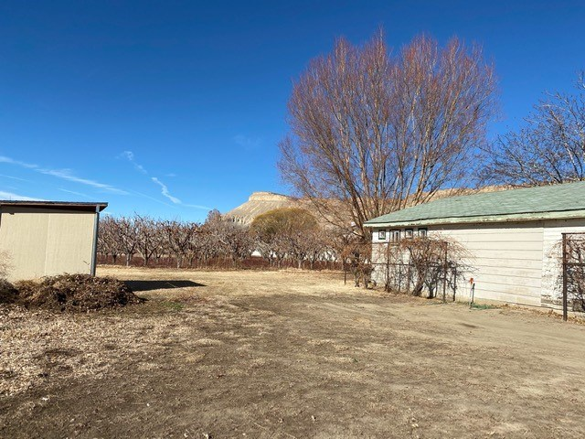 222 Elberta Avenue Property Photo - Palisade, CO real estate listing