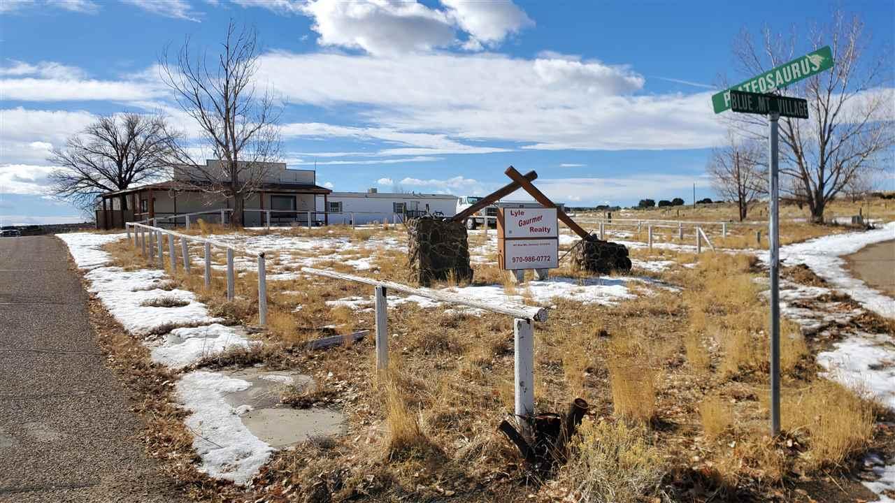 801 W Blue Mountain Village Property Photo 5