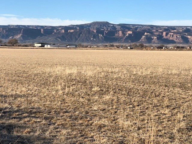 1211 21 Road Property Photo - Fruita, CO real estate listing