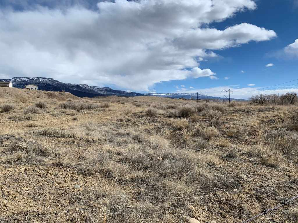 3469 D Road Property Photo - Palisade, CO real estate listing