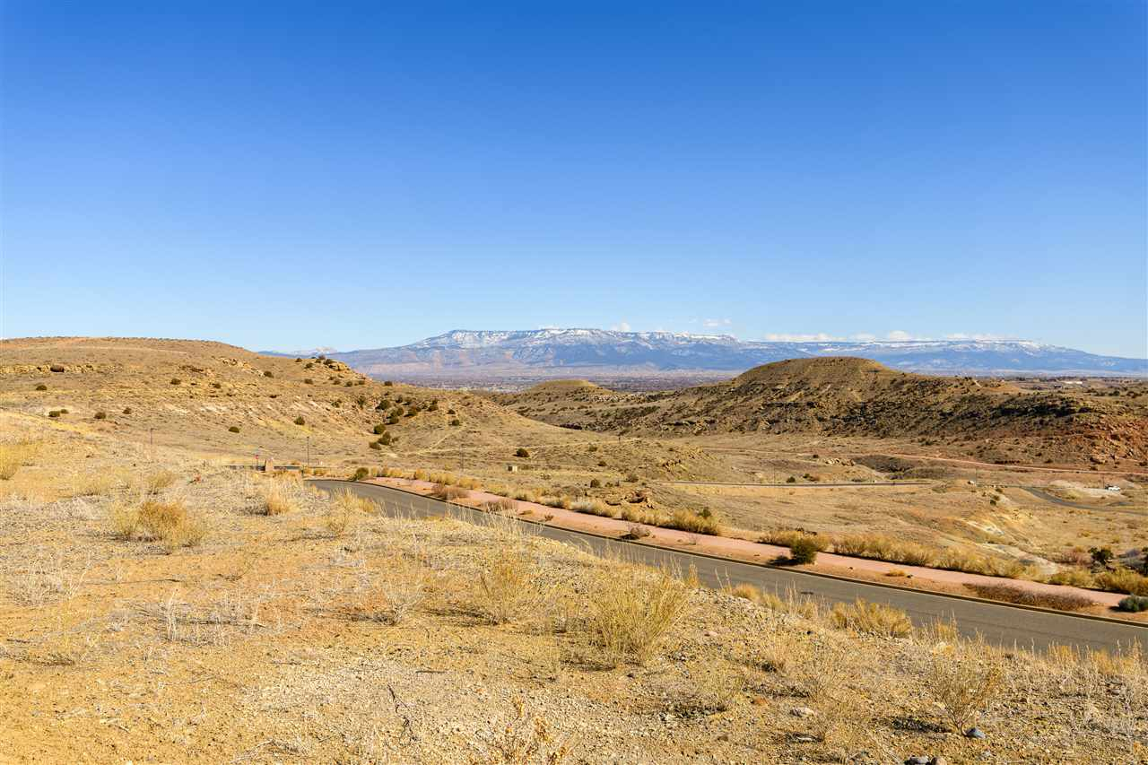 344 Redlands Mesa Drive Property Photo