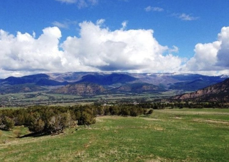 TBD 59 Road Property Photo - Collbran, CO real estate listing