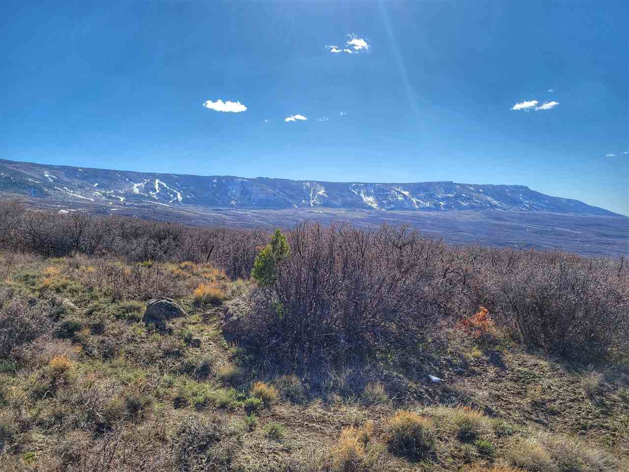TBD Old Grand Mesa Road Property Photo - Mesa, CO real estate listing