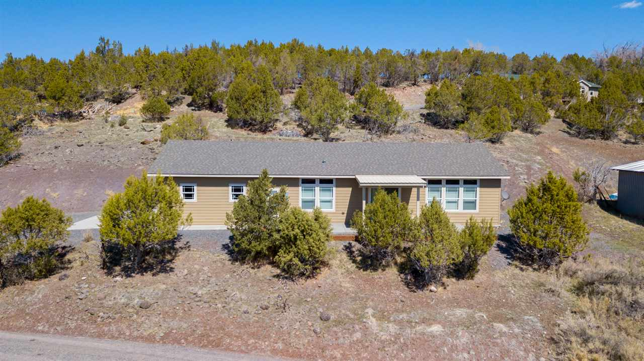 2006 Cedar Crest Lane Property Photo - Collbran, CO real estate listing