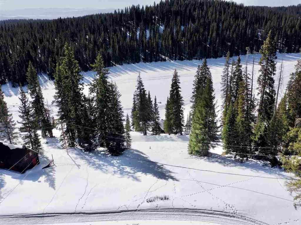 TBD Hilltop Drive Property Photo - Cedaredge, CO real estate listing