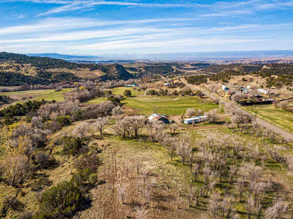19252 Green Valley Road Property Photo - Cedaredge, CO real estate listing