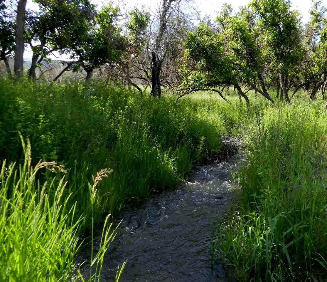 51657 Ke Road Property Photo 20