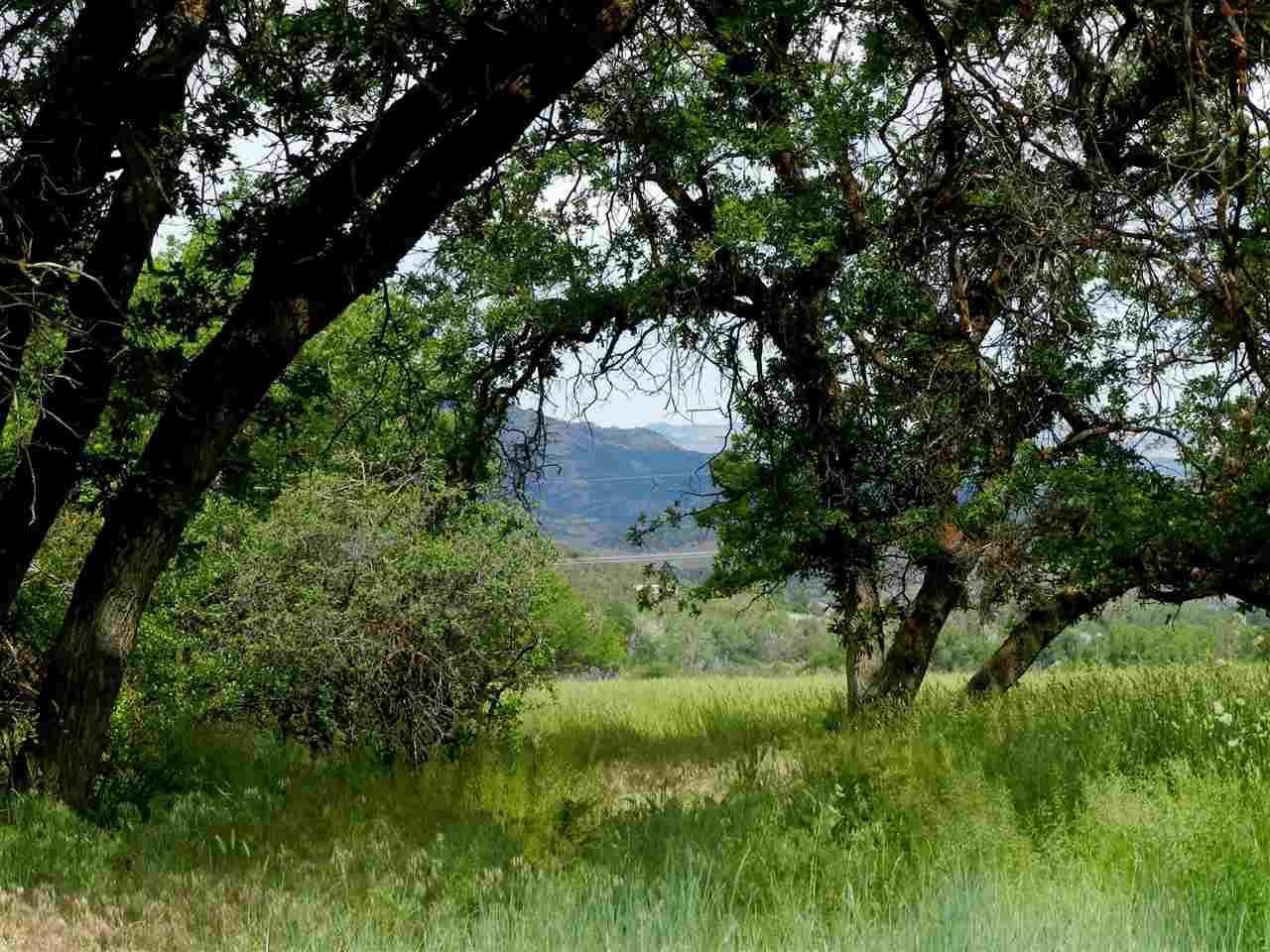 51657 Ke Road Property Photo 42