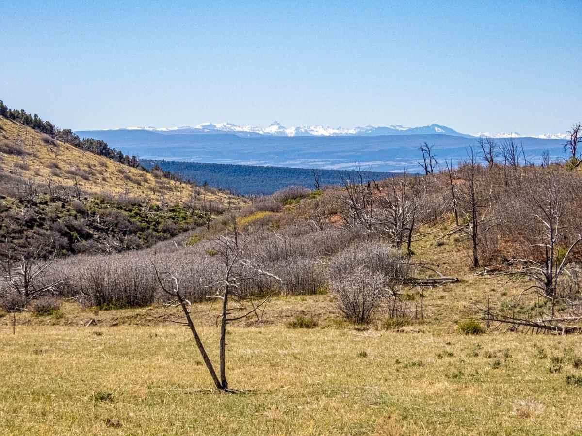 18495 Currant Creek Road Property Photo