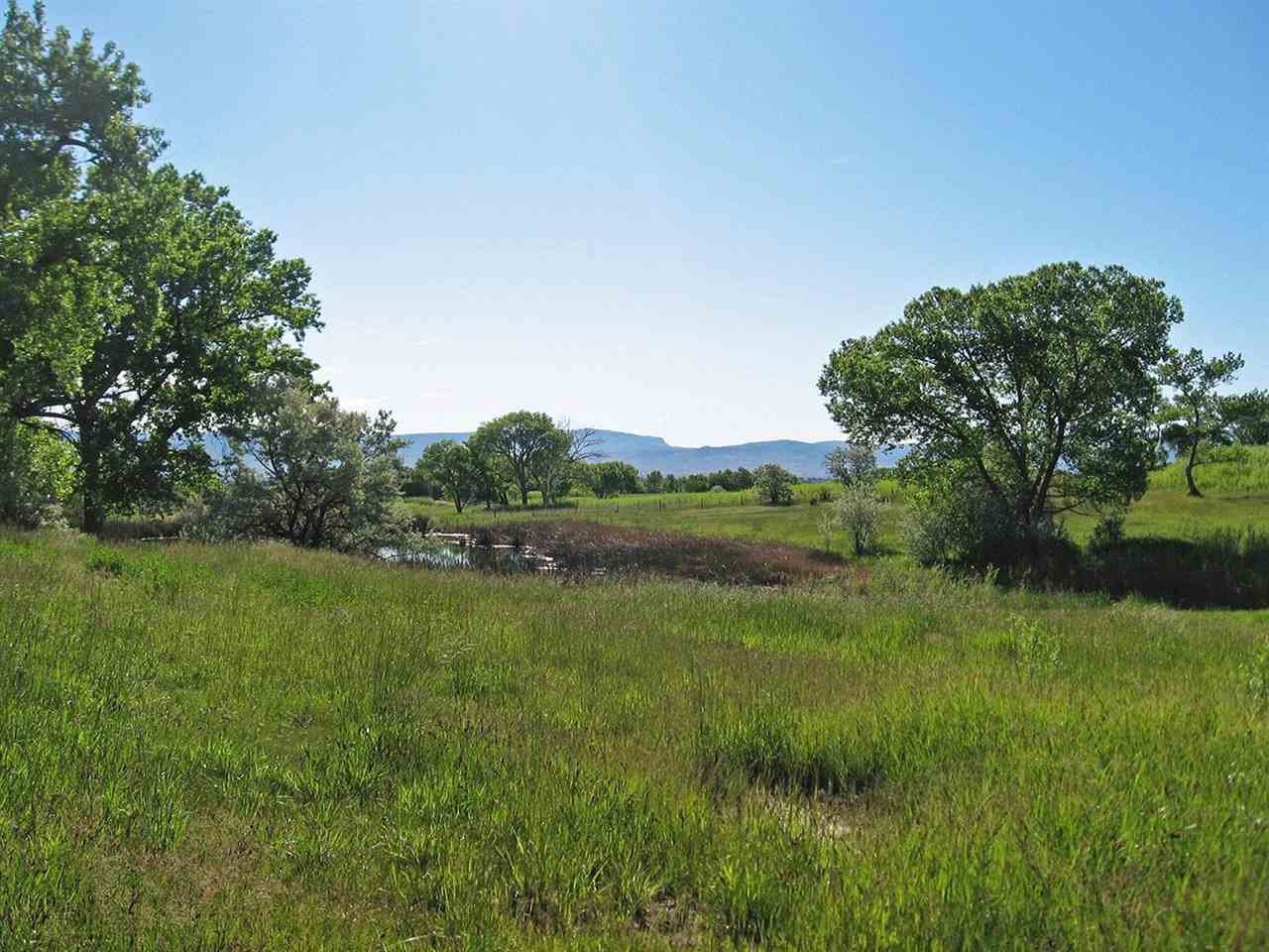 59346 Spring Creek Road Property Photo 7